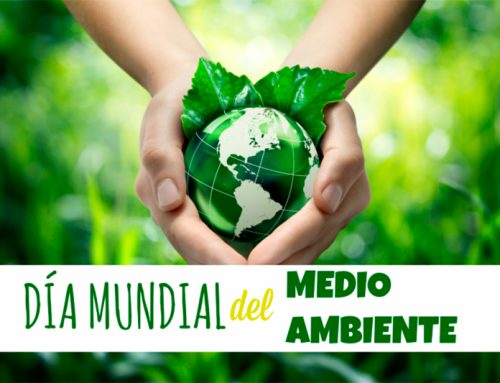 El día del Medio Ambiente. Utiliza el Green Marketing
