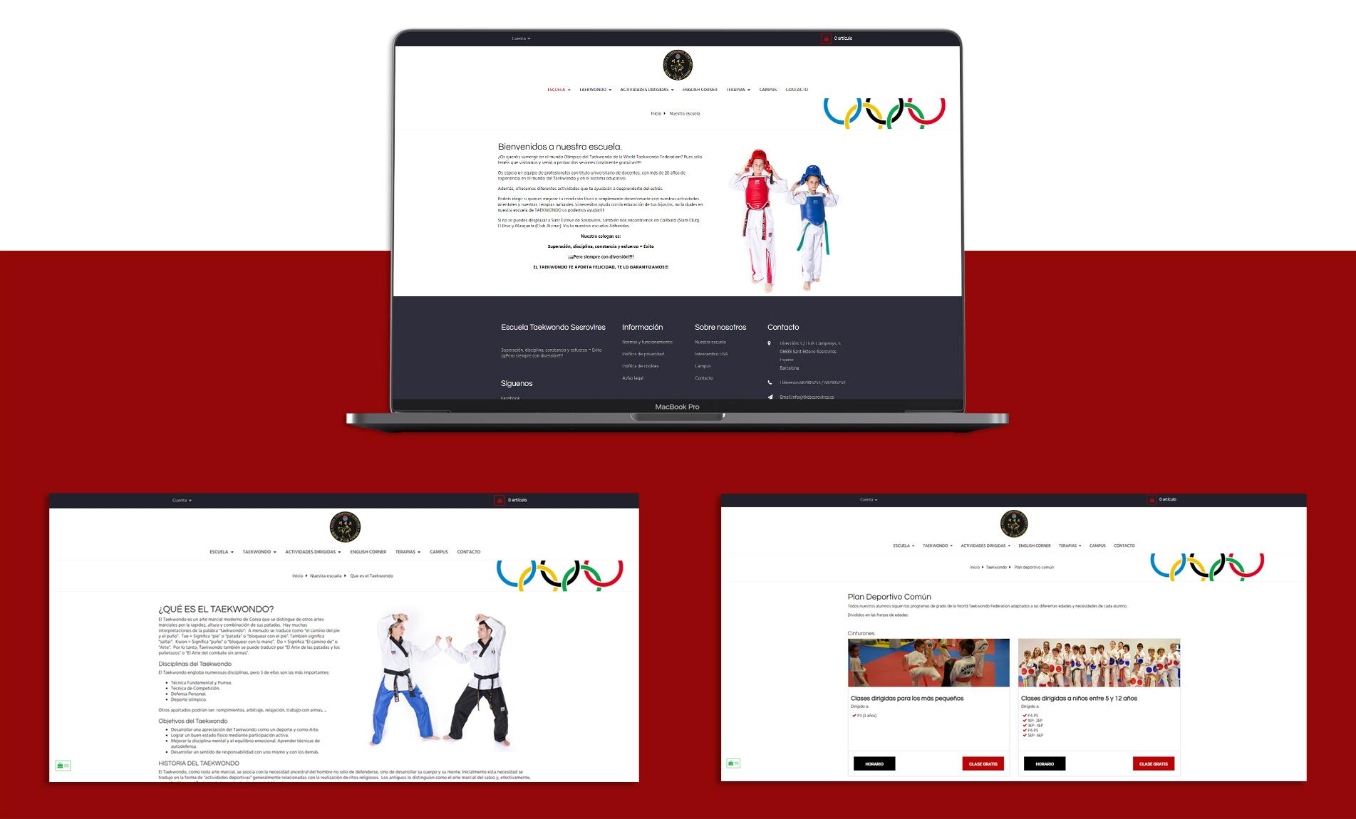 pages_website_taekwondo