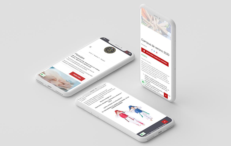 responsive_mobile_taekwondo