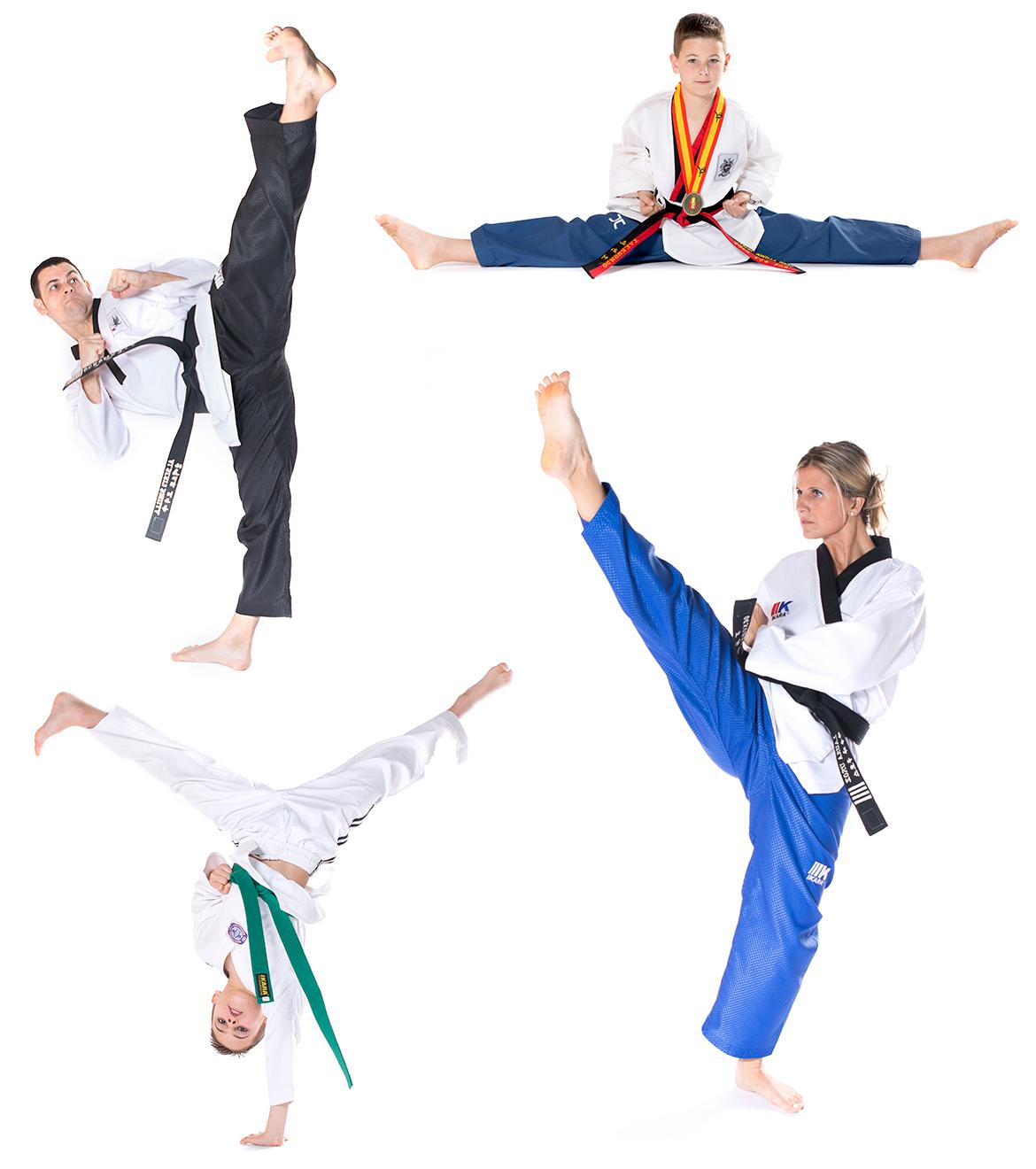 taekwondo_sanes_project